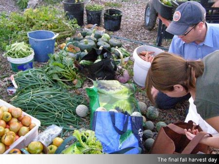 A growing interest in local food has led to several new initiatives supporting new farmers, connecting residents to local food, and advocating for good local food policies.  (Photo from The Foodshed Project)